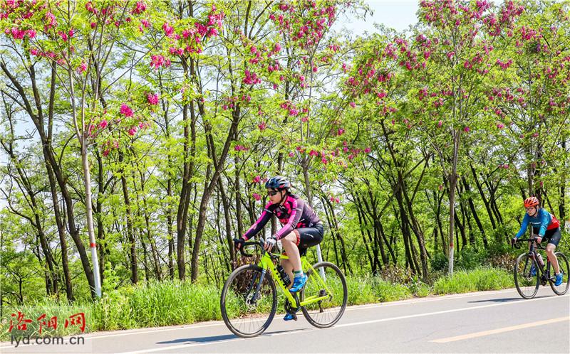 洛宁县:打造特色体育小镇 激发乡村振兴活力